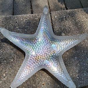 Iridescent Starfish dish